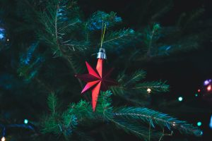 Shiny red star as Christmas tree ornament amid deep green pine branches - to inspire your property search.